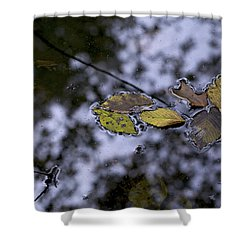 Shower Curtain featuring the photograph Suspension by Jane Eleanor Nicholas