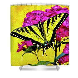Swallow Tail Feeding Shower Curtain