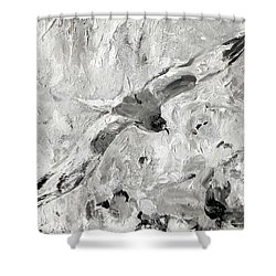 Swallow-tailed Gull Shower Curtain