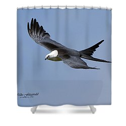 Swallow-tailed Kite Shower Curtain