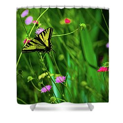 Swallowtail Butterfly Shower Curtain