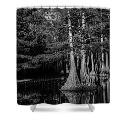 Swamp Black And White Shower Curtain by Ester  Rogers