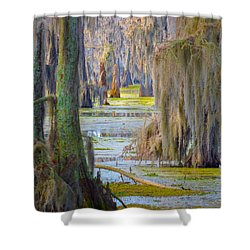 Swamp Curtains In February Shower Curtain