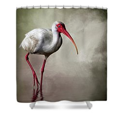 Swamp Days Shower Curtain
