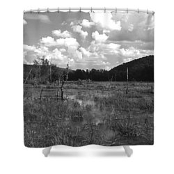 Swampoem Shower Curtain by Curtis J Neeley Jr
