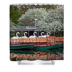 Swan Boat Spring Shower Curtain by Susan Cole Kelly