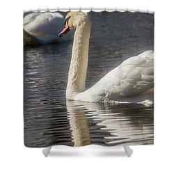 Shower Curtain featuring the photograph Swan by David Bearden