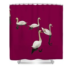 Shower Curtain featuring the photograph Swan Family On Burgandy by Constantine Gregory
