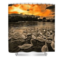 Swan Gloaming Kingston U K Shower Curtain