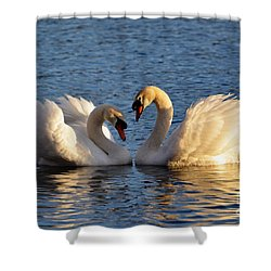 Swan Heart Shower Curtain by Mats Silvan