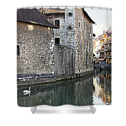 Shower Curtain featuring the photograph Swan In Annecy France Canal by Katie Wing Vigil