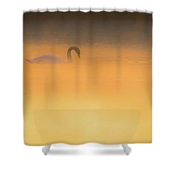 Swan In Aurora's Fiery Dawn Shower Curtain