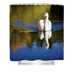 Swan In Color Shower Curtain