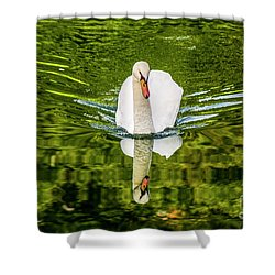 Swan Lake Nature Photo 892 Shower Curtain