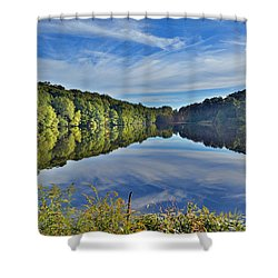 Swan Lake Times Two Shower Curtain