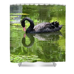 Swan Of Hearts Shower Curtain