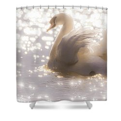 Swan Of The Glittery Early Evening Shower Curtain