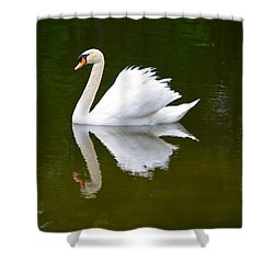 Swan Reflecting Shower Curtain by Richard Bryce and Family