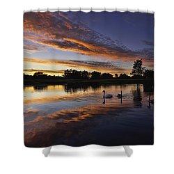 Swan Sunset Shower Curtain by Ian Merton