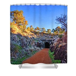Swan View Railway Tunnel Shower Curtain by Dave Catley