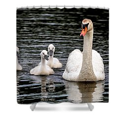 Swan-voy Shower Curtain