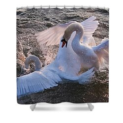 Nuptial Dance 3 Shower Curtain