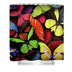 Swarm Of Butterfles  Shower Curtain