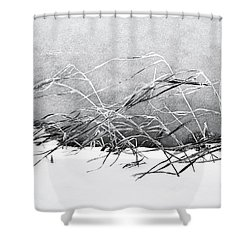 Sway Shower Curtain by Karen Stahlros