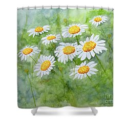 Swaying Daisies  Shower Curtain