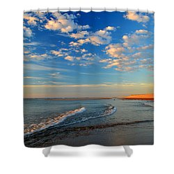 Sweeping Ocean View Shower Curtain by Dianne Cowen