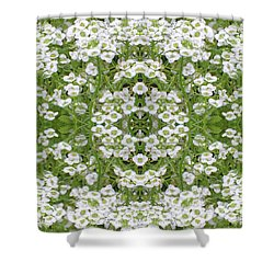 Shower Curtain featuring the digital art Sweet Alyssum Abstract by Linda Phelps