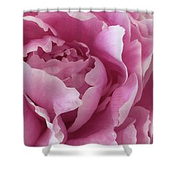 Sweet As Cotton Candy Shower Curtain by Sherry Hallemeier