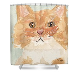 Sweet Attitude Shower Curtain