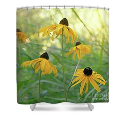 Shower Curtain featuring the photograph Sweet August by Cindy Garber Iverson