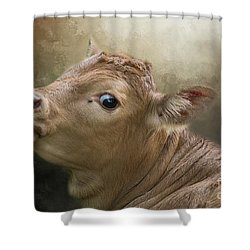 Sweet Baby Shower Curtain