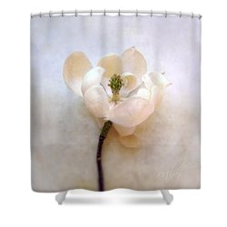 Sweet Bay Magnolia Bloom Shower Curtain by Louise Kumpf