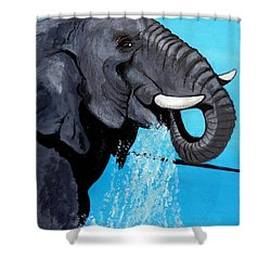 Sweet Beauty Shower Curtain