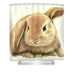 Sweet Bunny Shower Curtain