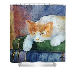 Sweet Dreams On The Books Shower Curtain