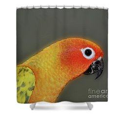 Sweet Face Shower Curtain by Smilin Eyes  Treasures