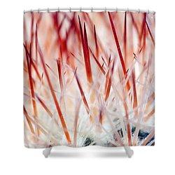 Sweet Gentle Pink Blooming Cacti Shower Curtain