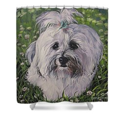 Shower Curtain featuring the painting Sweet Havanese Dog by Lee Ann Shepard