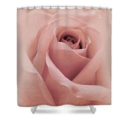 Shower Curtain featuring the photograph Sweet In Pink by The Art Of Marilyn Ridoutt-Greene