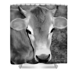 Shower Curtain featuring the painting Sweet Jersey Girl - Jersey Cow by Janine Riley