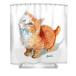Sweet Kitty Shower Curtain
