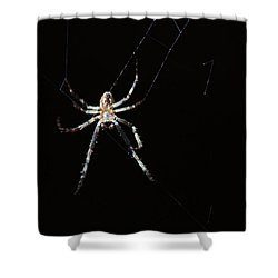 Sweet Lady Guarding Shed Shower Curtain