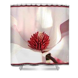 Sweet Magnolia Shower Curtain by Carol Groenen