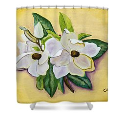 Sweet Magnolias Shower Curtain by Christie Nicklay