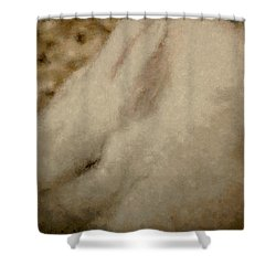 Sweet Marshmallow Shower Curtain