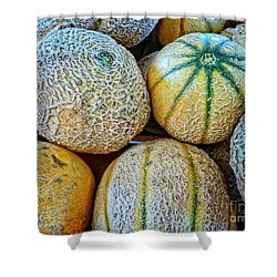 Sweet Melons Shower Curtain by Dee Flouton